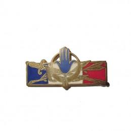 Insigne Forces Française en...